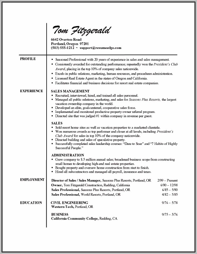 Professional Resume Writing Tips Examples
