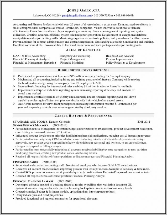 Professional Summary In Resume For Accountant