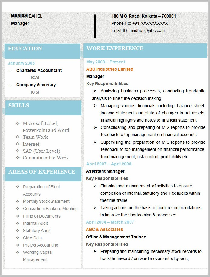 Resume Format Free Download For Accountant