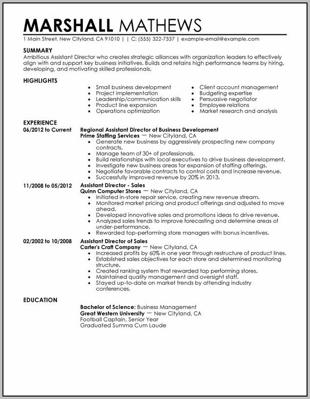 Sample Resume For Executive Assistant To Director