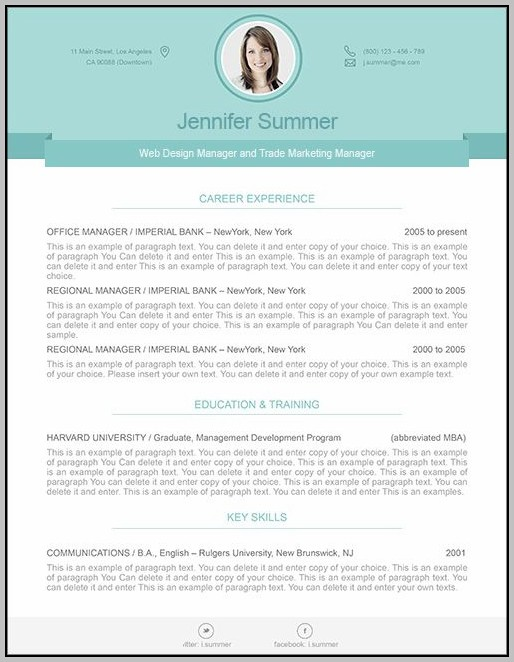 Contemporary Cv Template Word