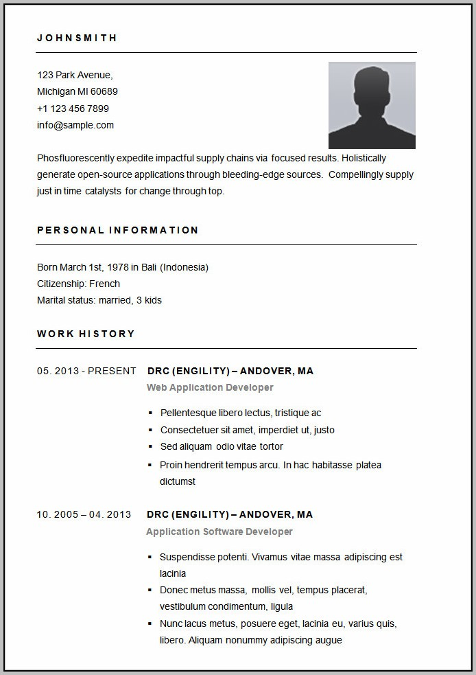 Basic Resume Format Word