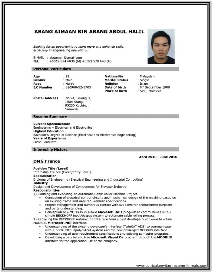 Best Resume Format Free Download Pdf