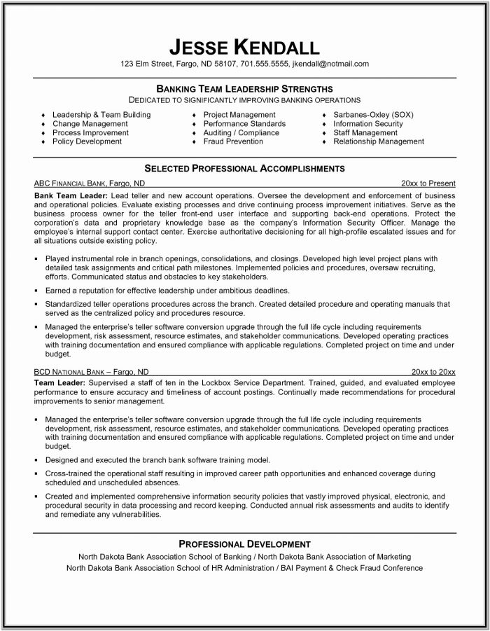 Team Leader Resume Format Free Download