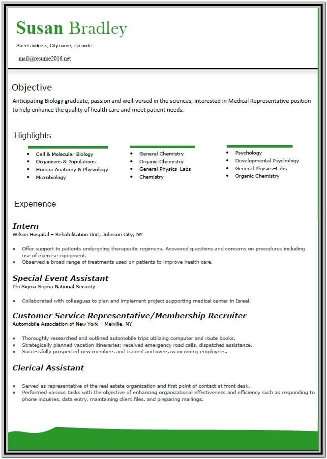 Updated Resume Format Free Download