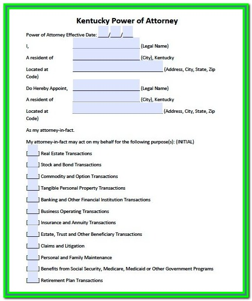 Durable Power Of Attorney Florida Form 2017