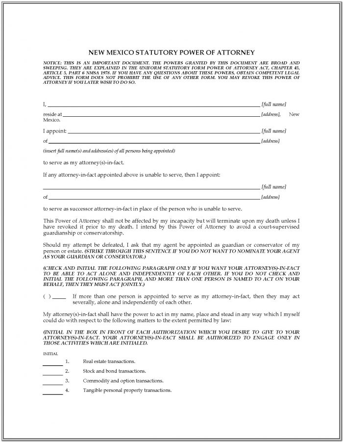 New Mexico Statutory Power Of Attorney Form