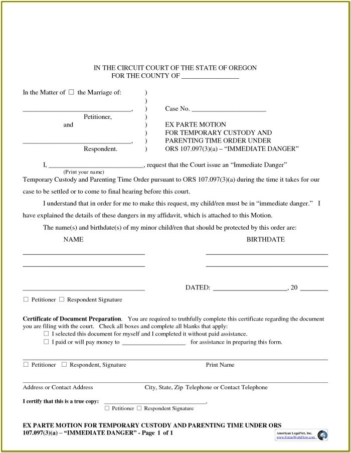 Standby Guardianship Form Florida