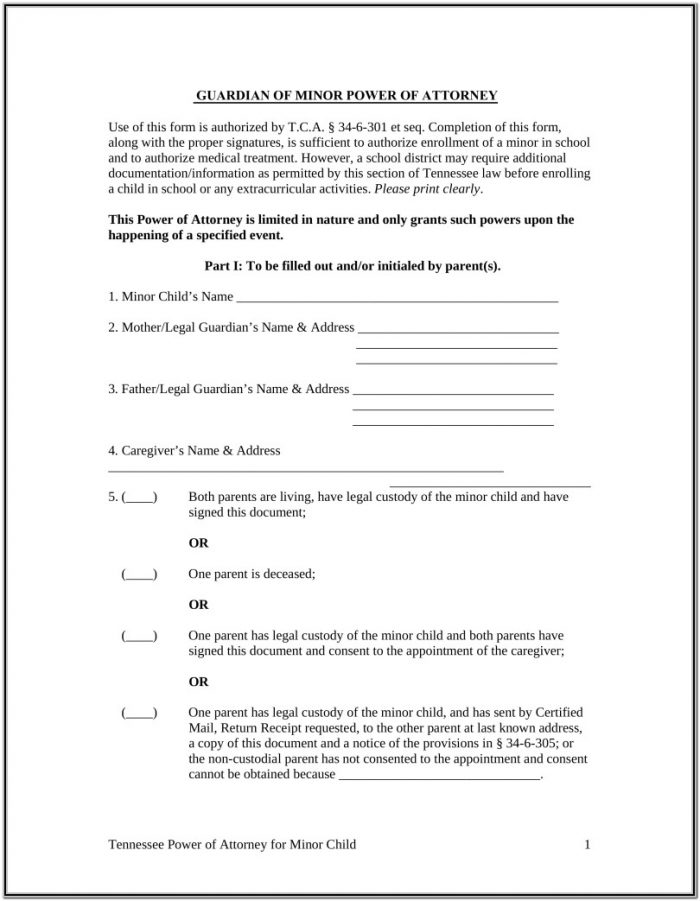 Temporary Guardianship Forms Ohio