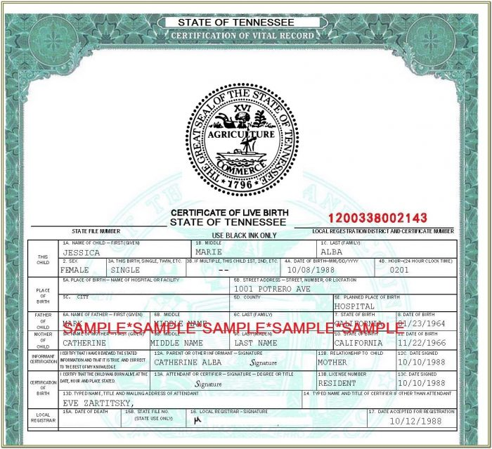 Divorce Forms Www.tn.gov