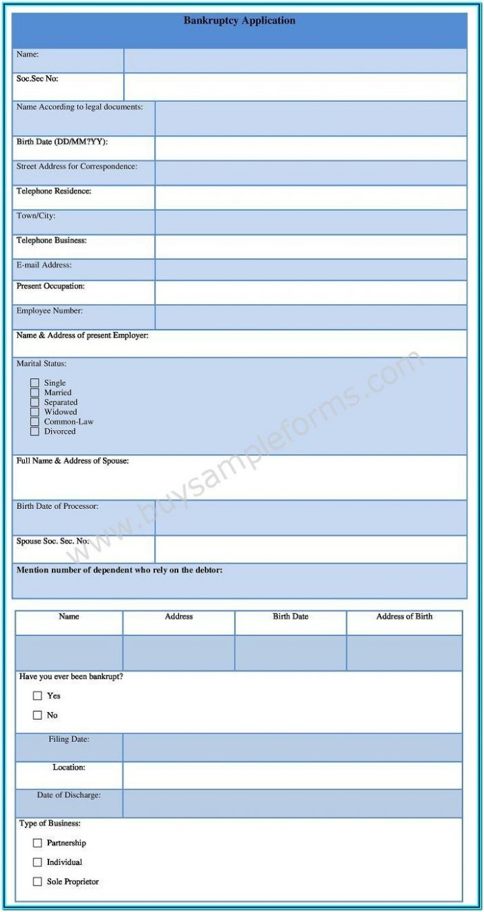 Bankruptcy Application Form