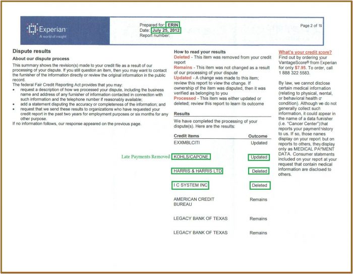 Experian Credit Report Form